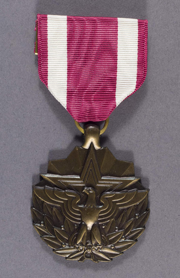 Meritorious Service Medal (Level 10)