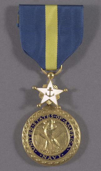 Navy Distinguished Service Medal (Level 3)